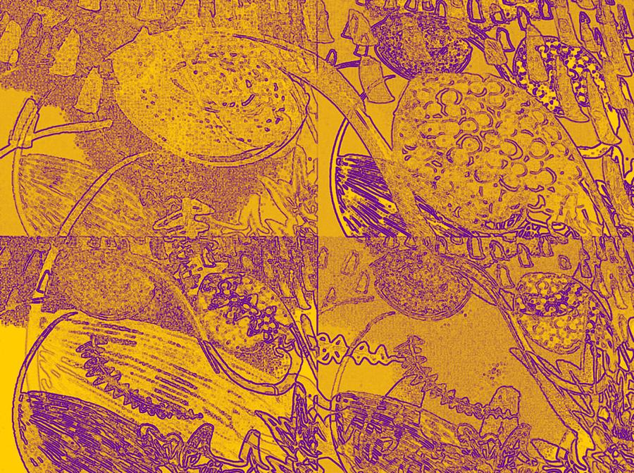 Inner Self - Golden Frequency Digital Art