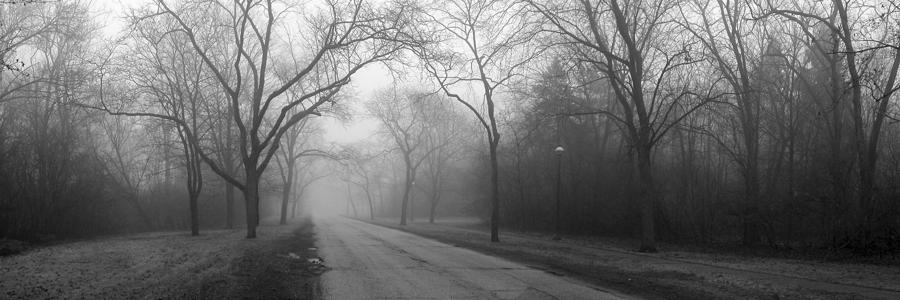 Into The Fog Photograph