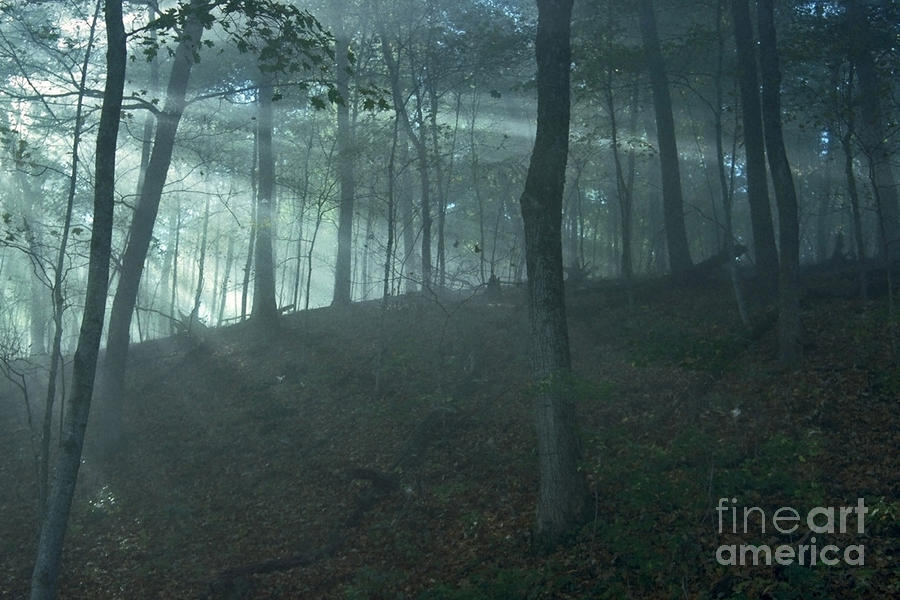 Iowa Fog Rays Photograph  - Iowa Fog Rays Fine Art Print