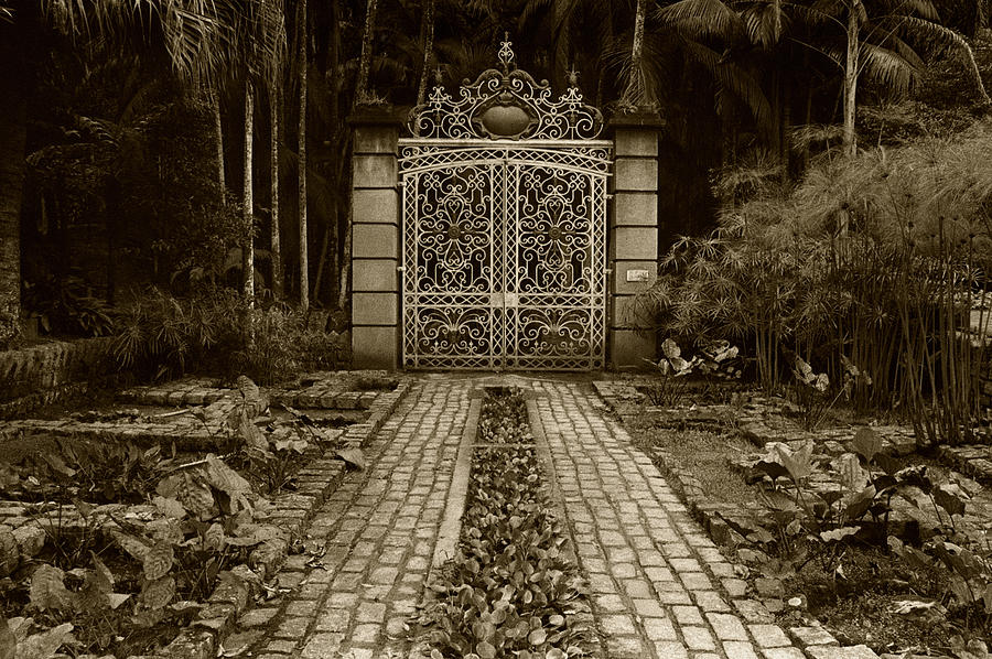 Iron Gate Photograph  - Iron Gate Fine Art Print