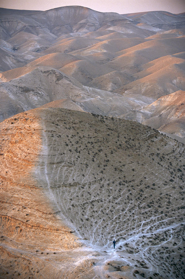 Israel, Judea Scene Of Judean Hills Photograph