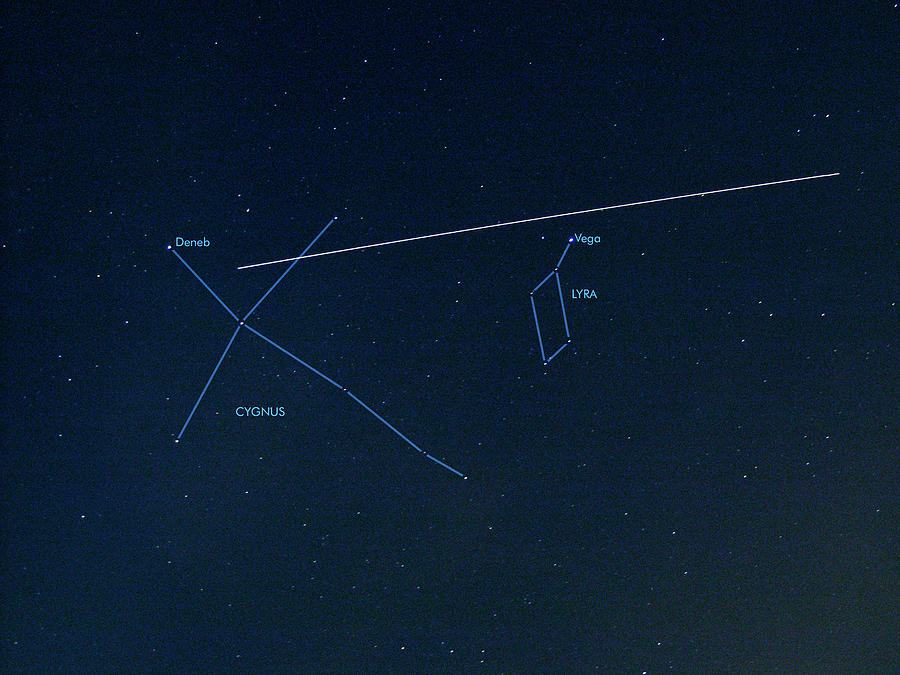 Cygnus Photograph - Iss Light Trail And Constellations by Detlev Van Ravenswaay