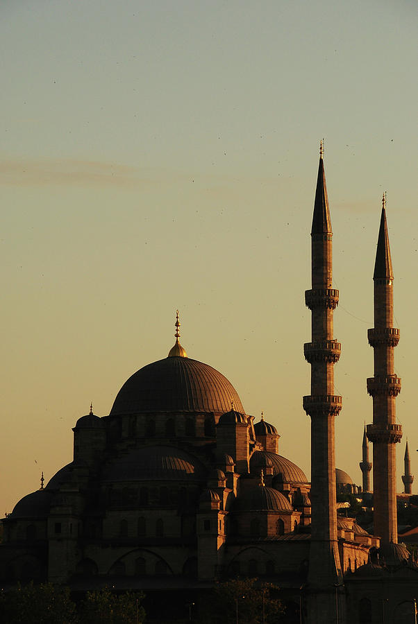 Istanbul Yeni Cami (new Mosque) Photograph