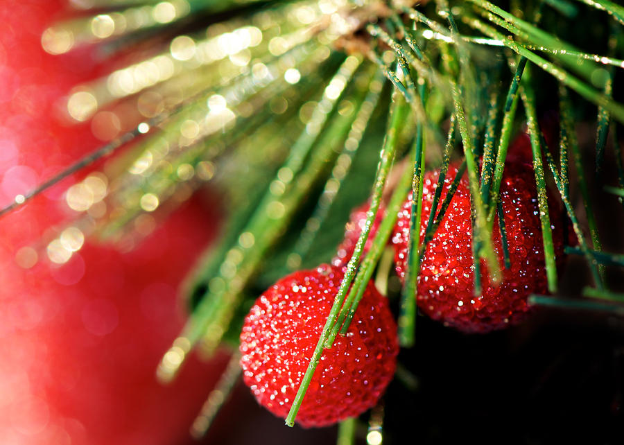 Its A Bokeh Christmas Photograph  - Its A Bokeh Christmas Fine Art Print