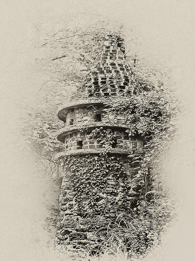 Ivy Covered Castle In The Woods Photograph