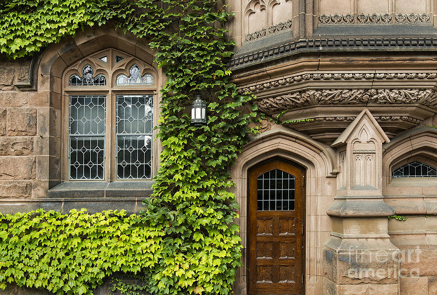 Ivy League Princeton Photograph  - Ivy League Princeton Fine Art Print