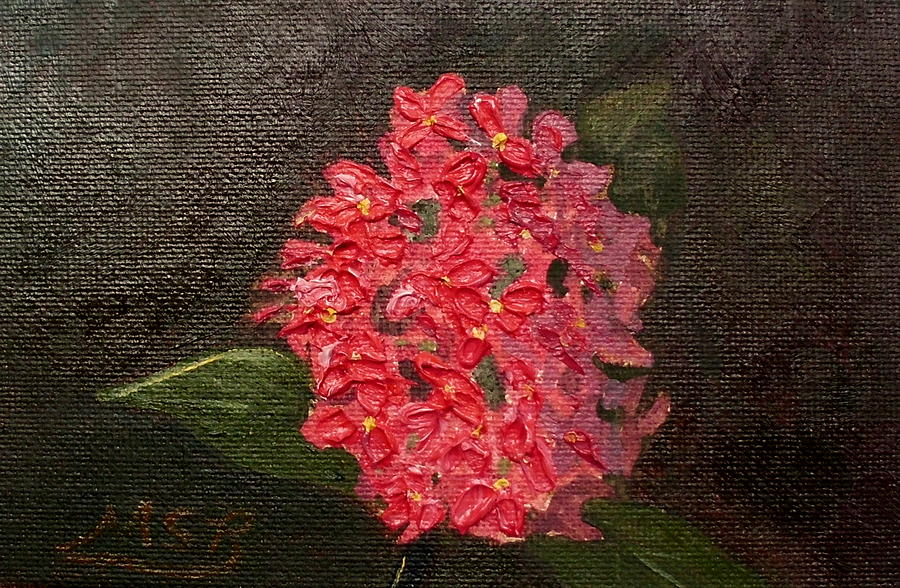 Ixora Bloom Painting  - Ixora Bloom Fine Art Print
