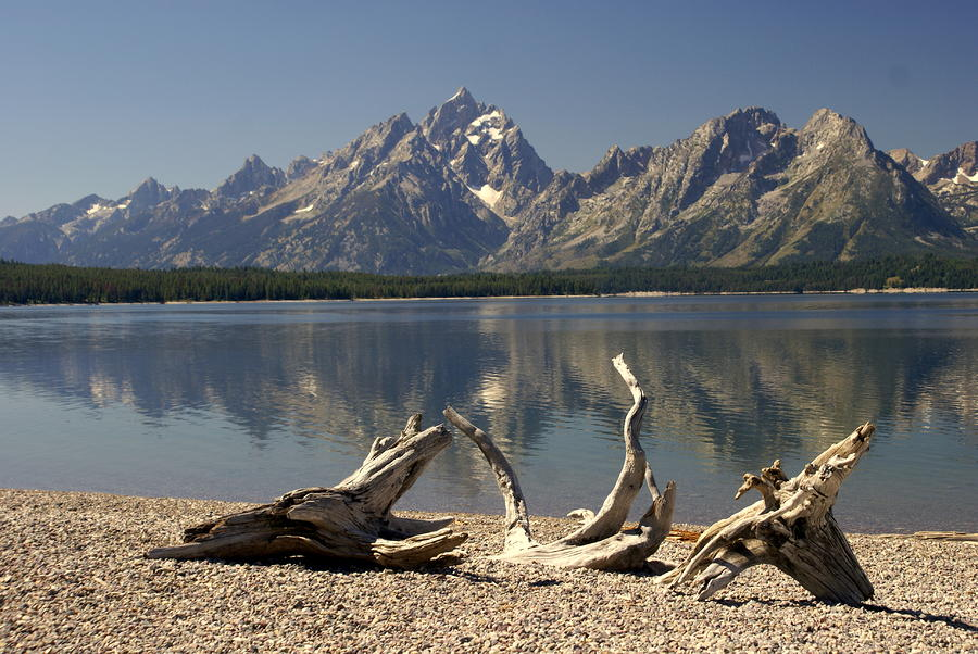 Jackson Lake 1 Photograph