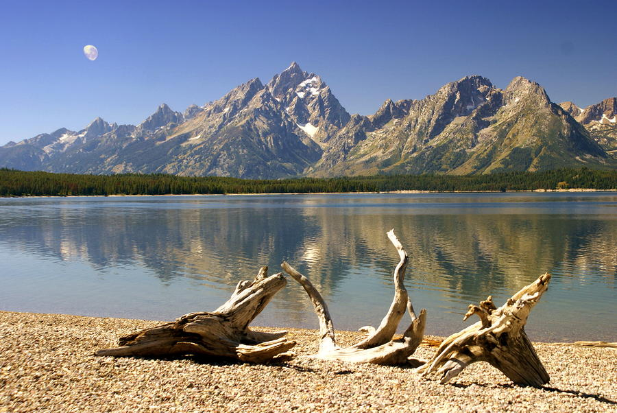 Jackson Lake 3 Photograph