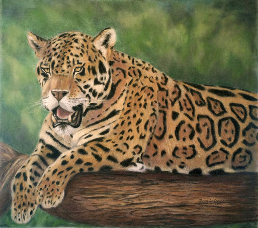 Jaguar  Painting  - Jaguar  Fine Art Print