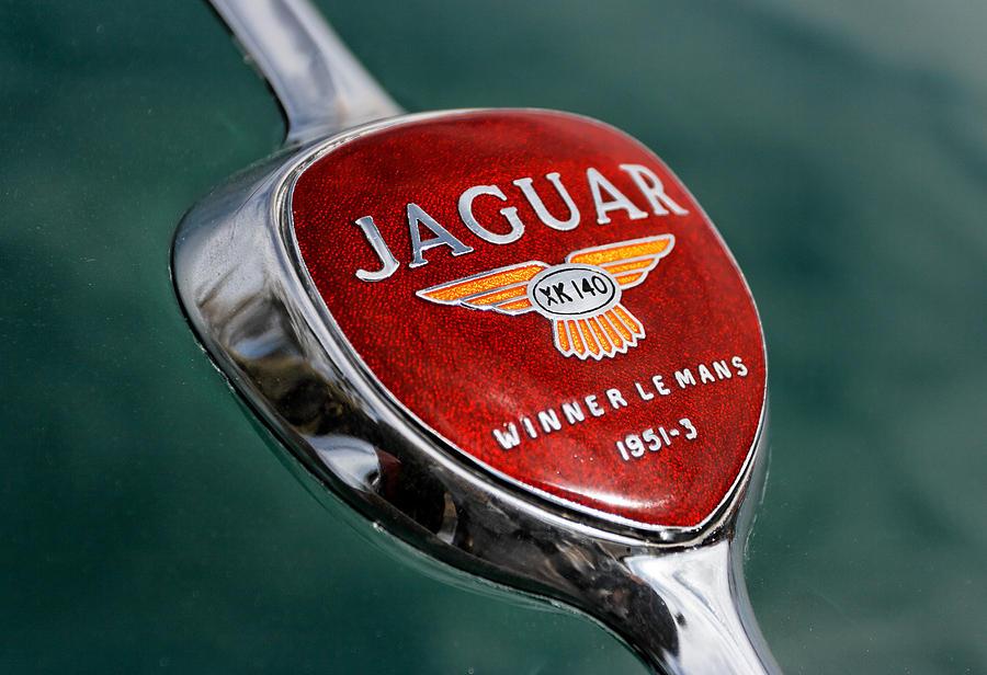 Jaguar Winner Le Mans Pyrography