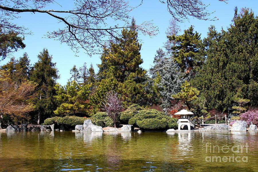 Japanese friendship garden san jose california 7d12782 for Japanese friendship garden