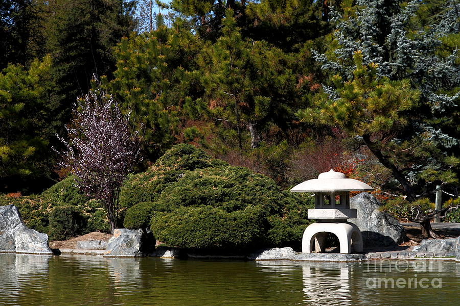 Japanese friendship garden san jose california 7d12780 for Japanese friendship garden