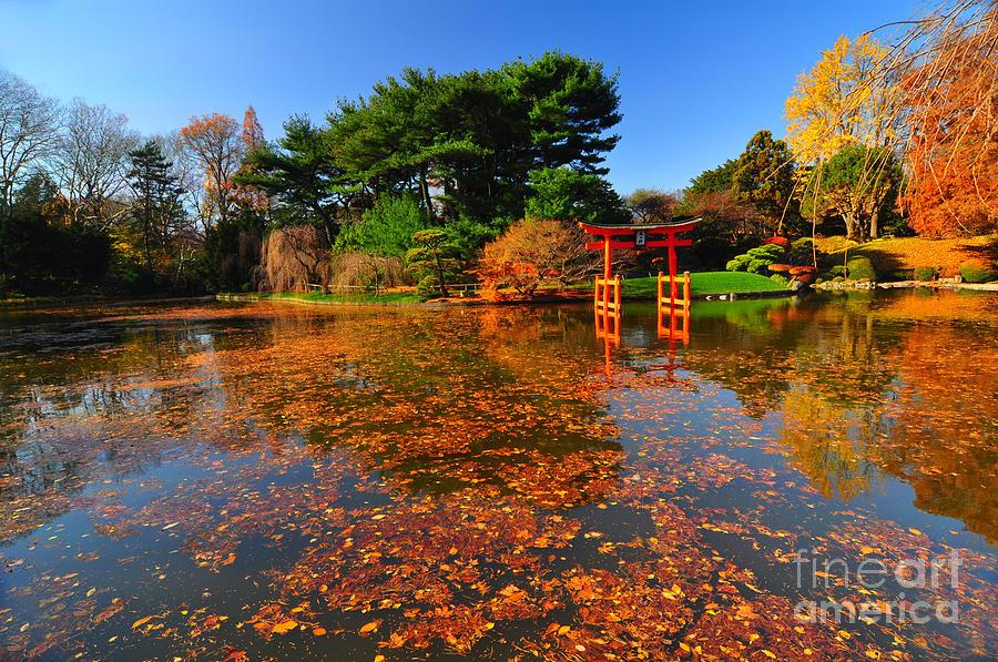Japanese Garden Brooklyn Botanic Garden Photograph By Mark Gilman