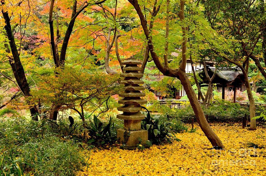 Japanese Garden In Autumn 6 Photograph
