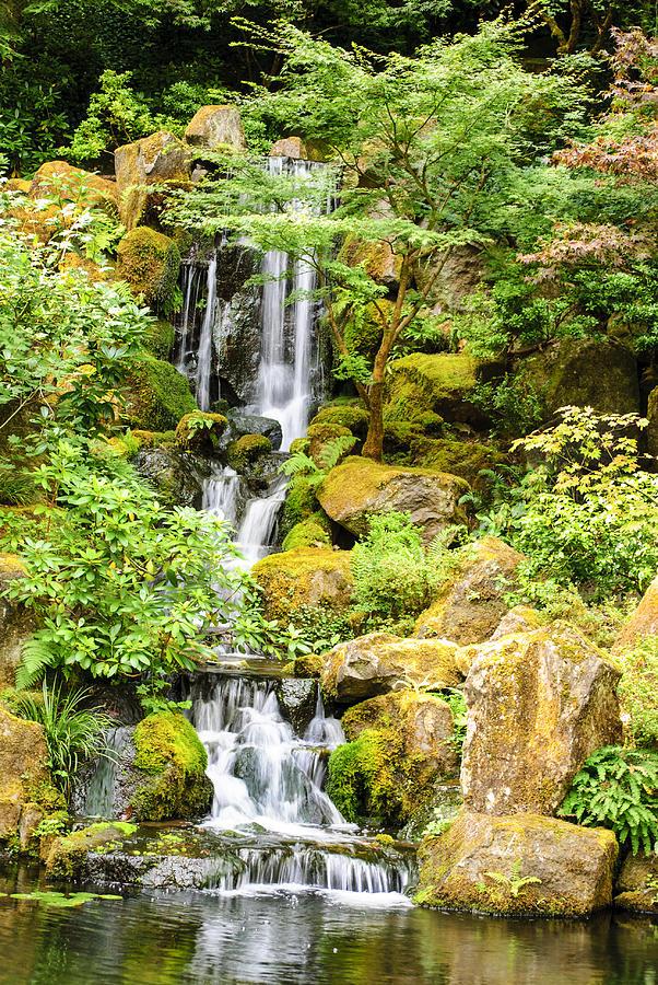 Triyaecom Backyard Japanese Waterfall Garden Various
