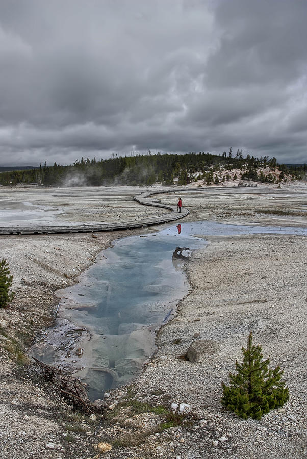Japanese Woman With Umbrella At Norris Geyser Basin Photograph  - Japanese Woman With Umbrella At Norris Geyser Basin Fine Art Print
