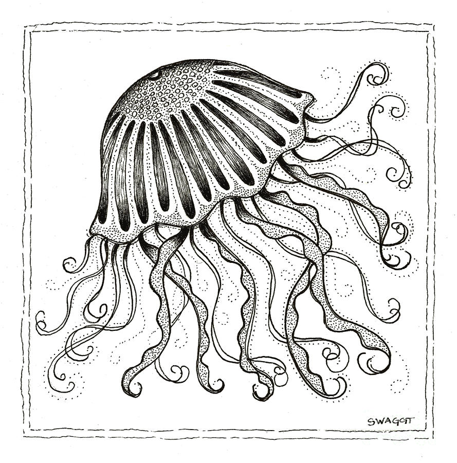 Jelly Fish Drawing  - Jelly Fish Fine Art Print
