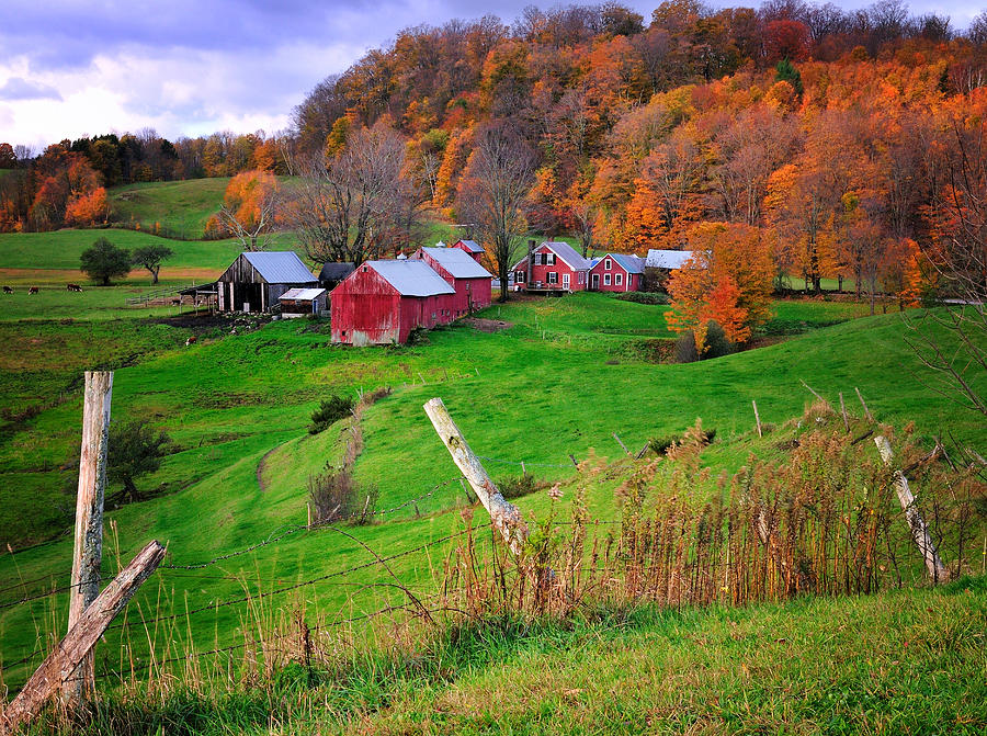 Jenne Farm autumn Scenic From Reading Vermont graph by Thomas Schoeller