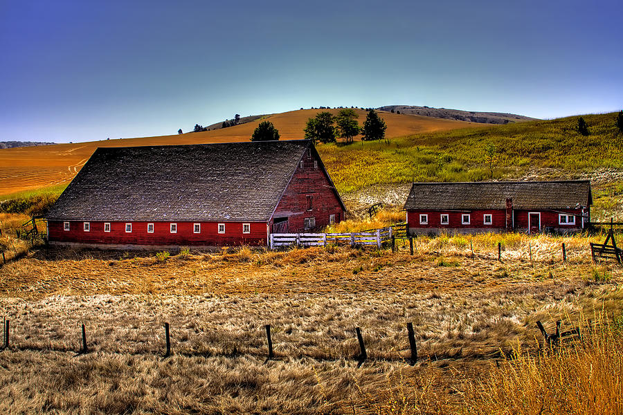 Johnson Road Barns Photograph  - Johnson Road Barns Fine Art Print