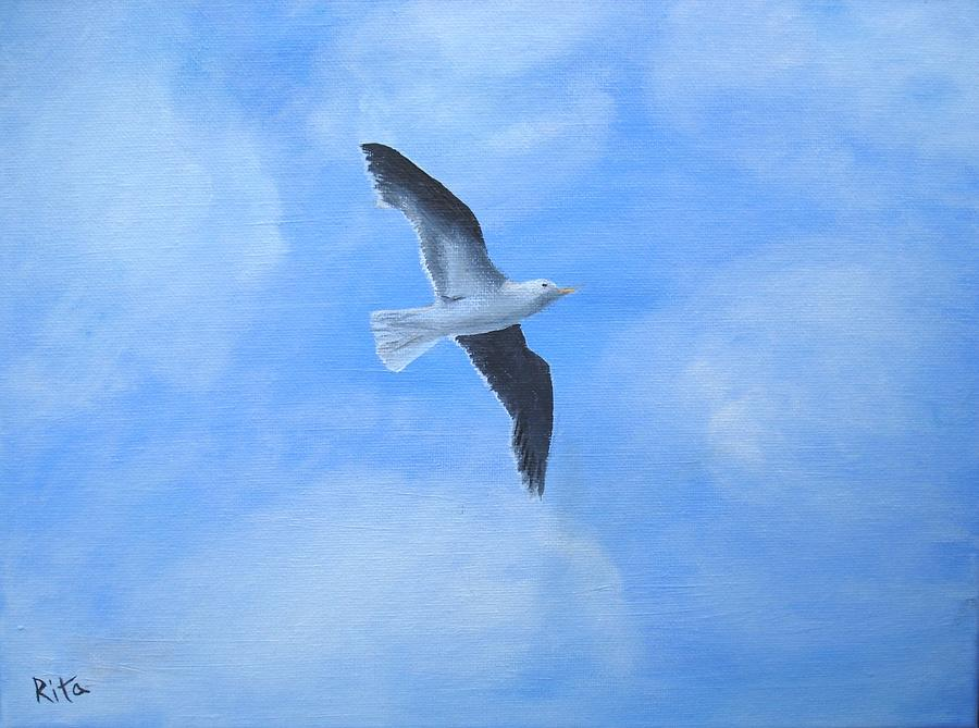 Jonathan Livingston Seagull Painting  - Jonathan Livingston Seagull Fine Art Print