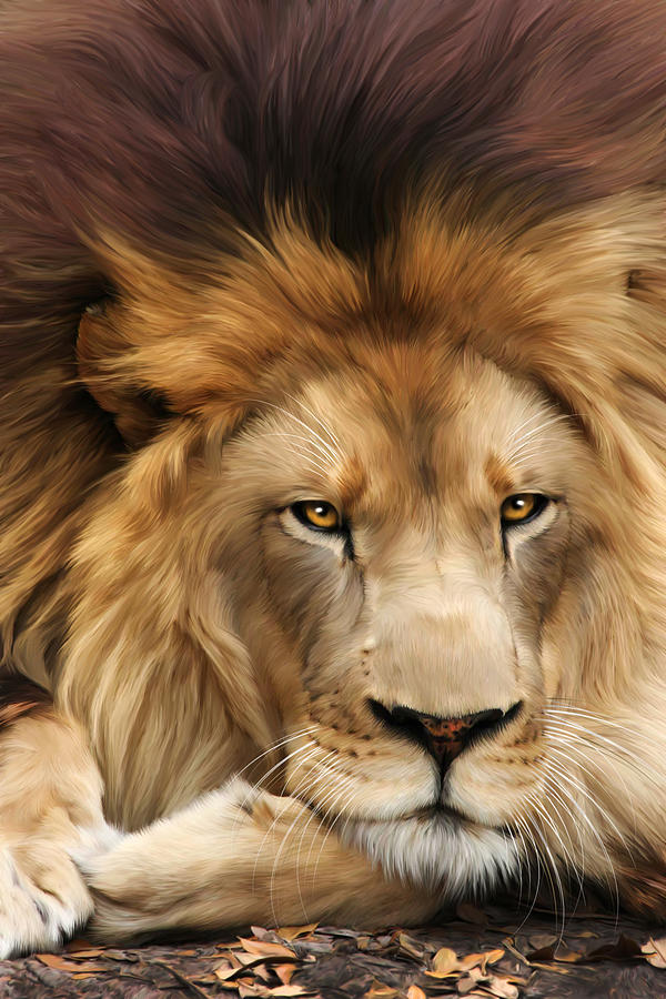 Joseph Digital Art - Joseph by Big Cat Rescue