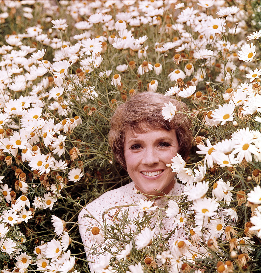 Julie Andrews Hour, Julie Andrews Photograph  - Julie Andrews Hour, Julie Andrews Fine Art Print