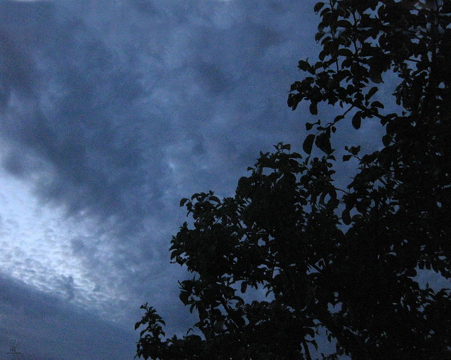 Night Photograph - June Apple Trees In The Clouds by Charles Dancik