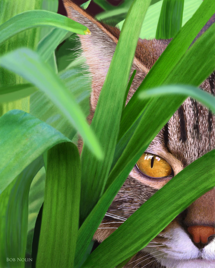 Jungle Cat Digital Art  - Jungle Cat Fine Art Print