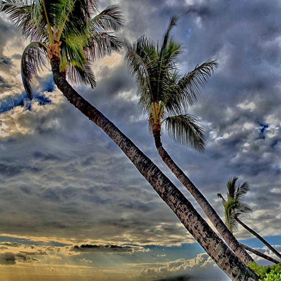 Kaanapali Hawaii Photograph  - Kaanapali Hawaii Fine Art Print
