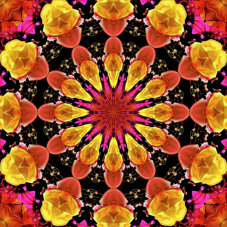 Kaleidoscope Art I I Photograph