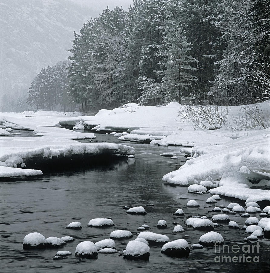 Katun River Photograph