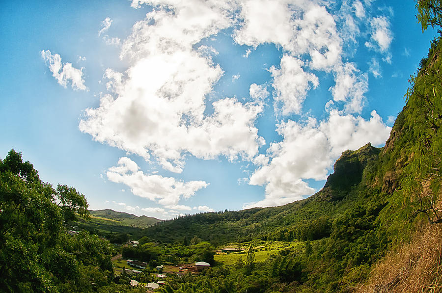 Kauai Landscape Photograph  - Kauai Landscape Fine Art Print
