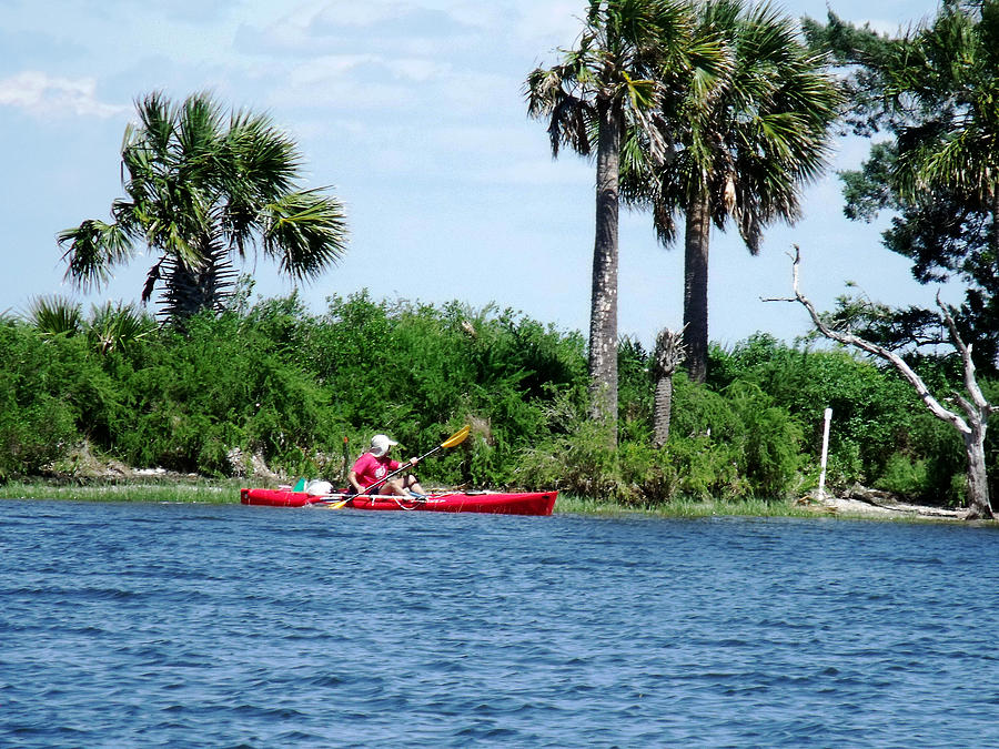 Kayaking Along The Gulf Coast Fl. Photograph  - Kayaking Along The Gulf Coast Fl. Fine Art Print
