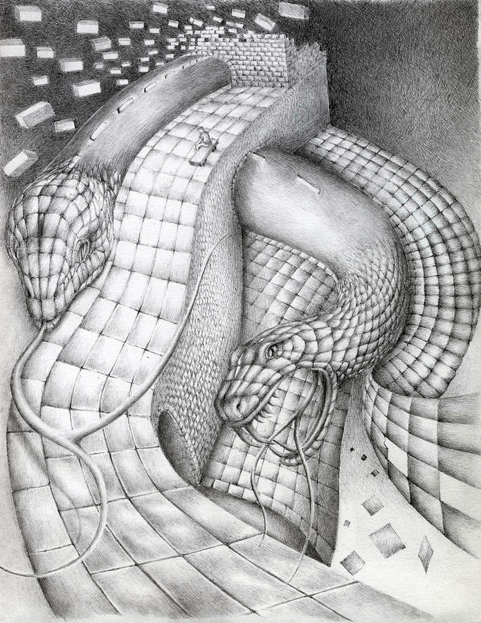 Kennedy Snakes Drawing  - Kennedy Snakes Fine Art Print