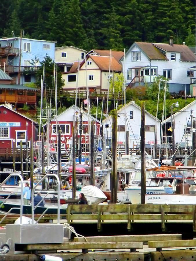 Ketchakan Alaska Marina Photograph