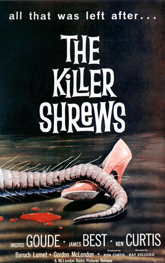 1950s Movies Photograph - Killer Shrews, The, 1959 by Everett