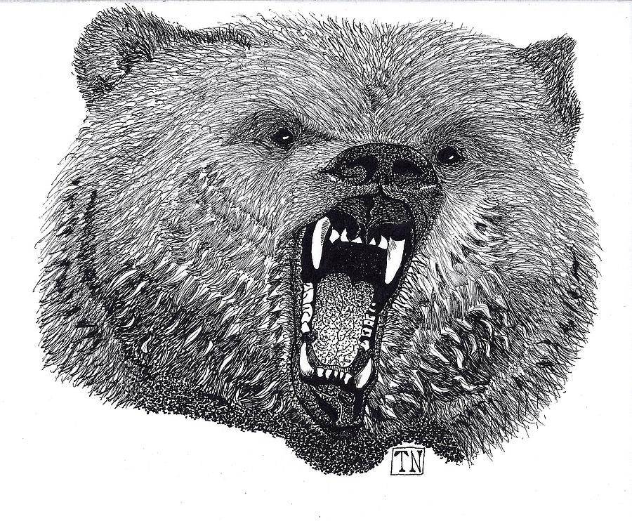 Framed Bear Prints Drawing - King Of The Wilds by Tony  Nelson