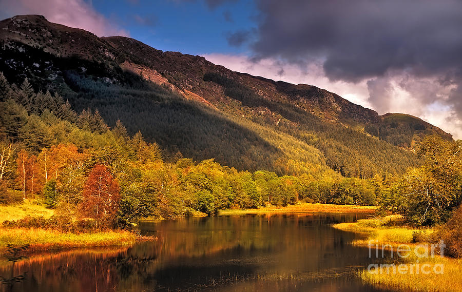 Kingdom Of Nature. Scotland Photograph  - Kingdom Of Nature. Scotland Fine Art Print