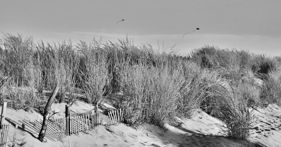 Kites Over Dunes - Jersey Shore Photograph