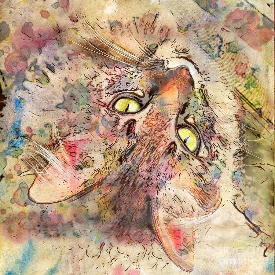 Kitty Fluffs Digital Art  - Kitty Fluffs Fine Art Print