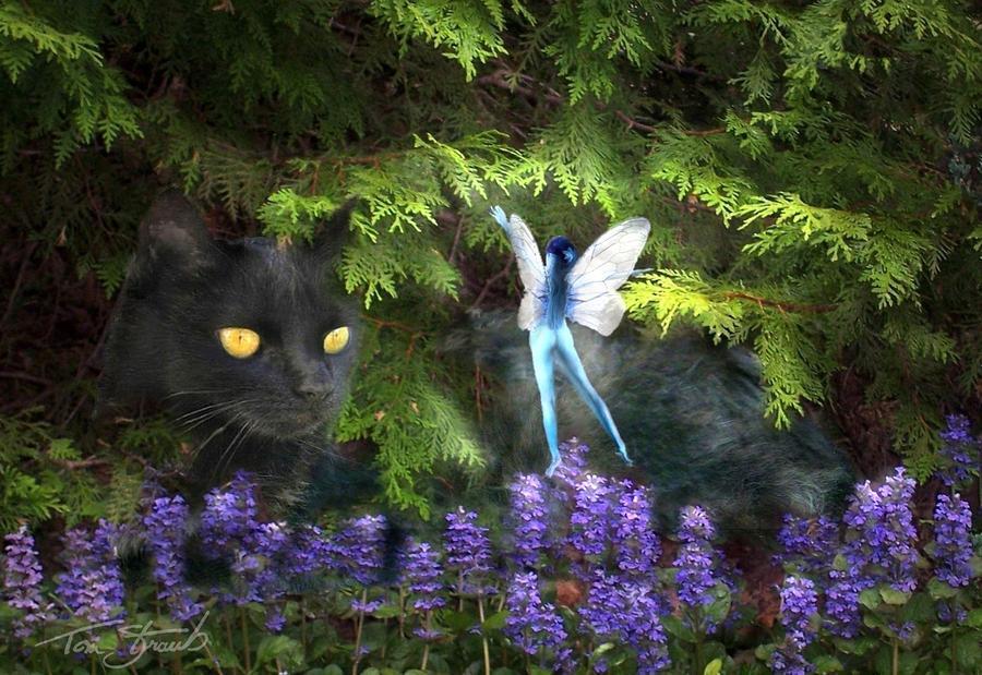 Kitty Digital Art