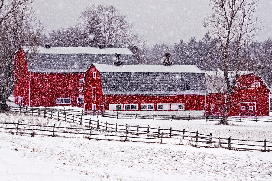 Knox Farm Snowfall Photograph