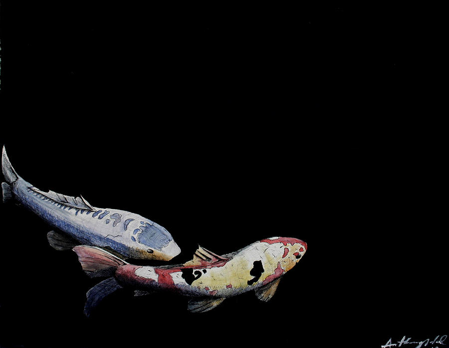 Koi fish swim painting by anthony nold for Fish swimming backwards