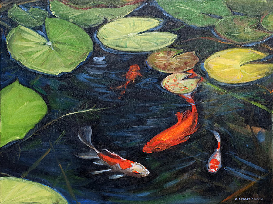 Koi Pond Water Lilies By Christine Montague