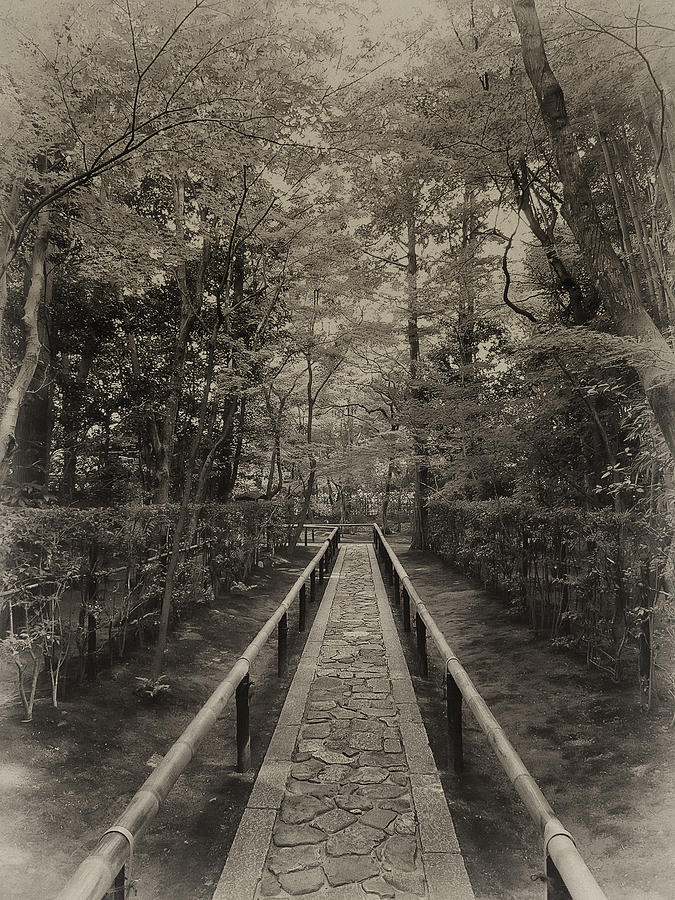 Koto-in Zen Temple Forest Path - Kyoto Japan Photograph