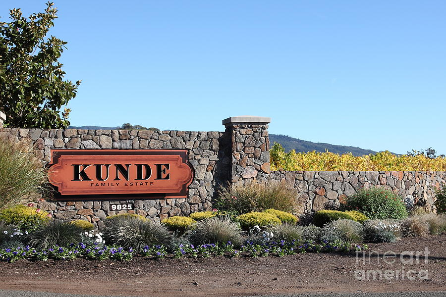 Kunde Family Estate Winery - Sonoma California - 5d19316 Photograph