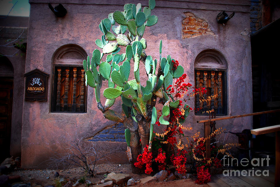 La Hacienda In Old Tuscon Az Photograph  - La Hacienda In Old Tuscon Az Fine Art Print
