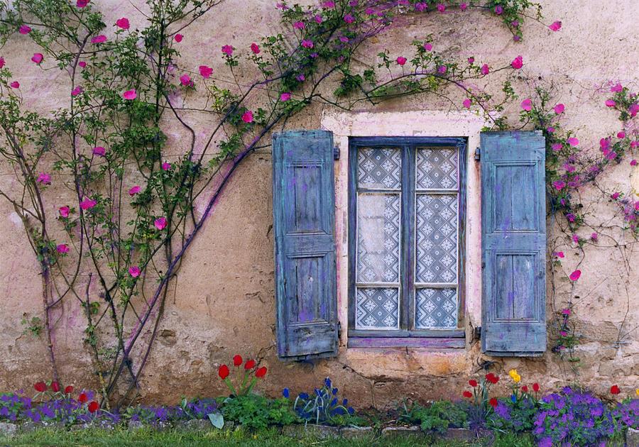 La Peinture Photograph