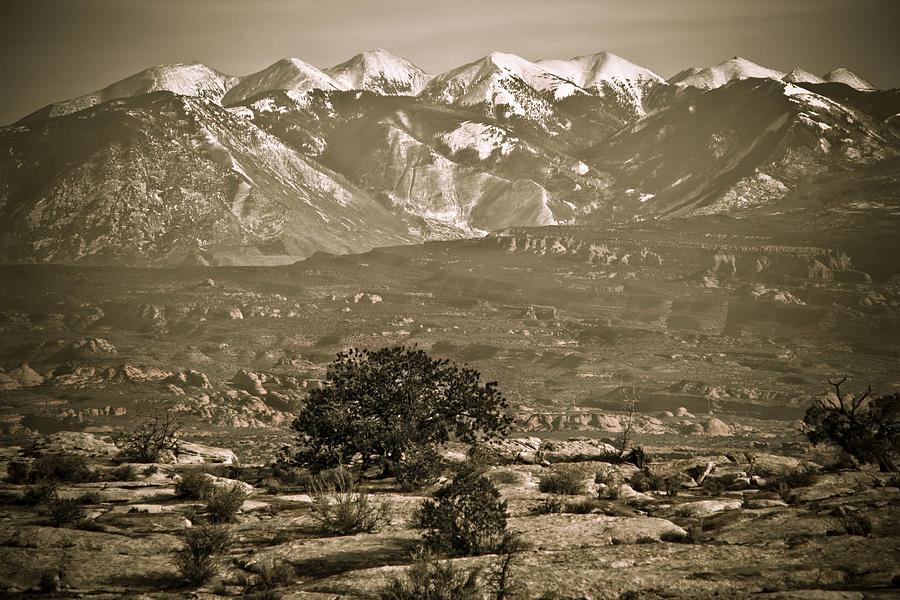La Sal Mountains Utah Photograph